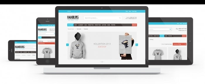View Information about WordPress eCommerce Blog Theme Hamburg