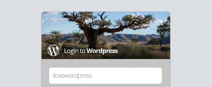 View Information about WP Login