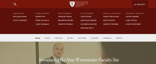 View Information about WTS Faculty Website