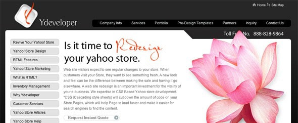 View Information about Yahoo Store Developer