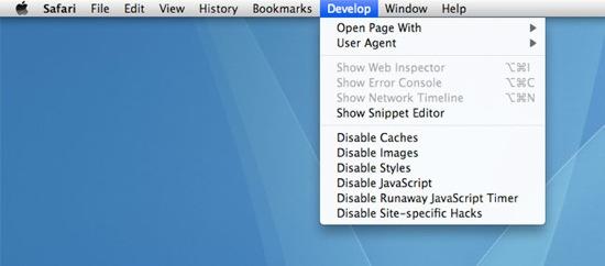 Develop menu in Safari