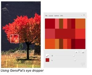 GenoPal Eye Dropper