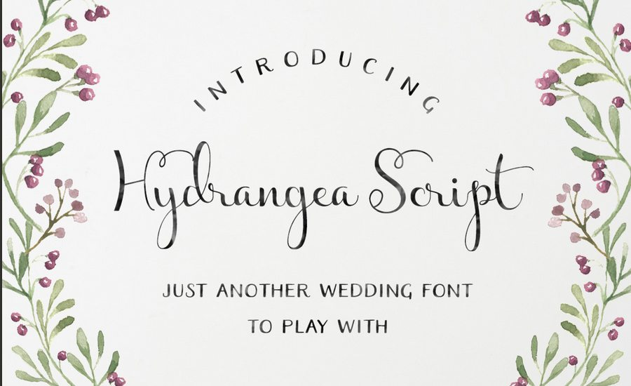1-23 100+ Beautiful Script, Brush & Calligraphy Fonts design tips
