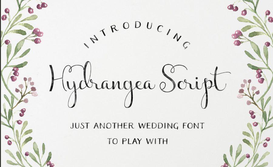 Good Font Combinations For Wedding Invitations: 100+ Beautiful Script, Brush & Calligraphy Fonts
