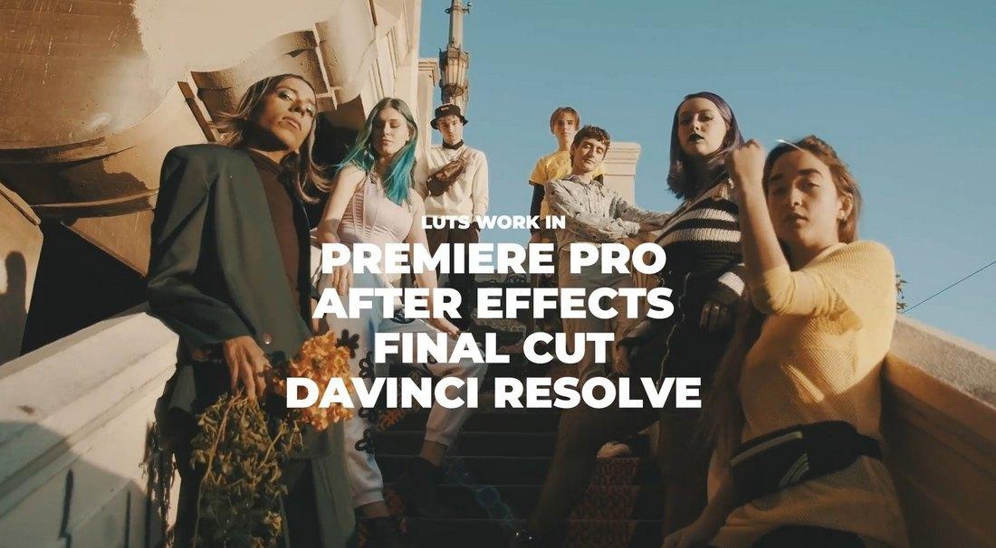 1000 Cinematic Color Presets LUTs for Premiere Pro