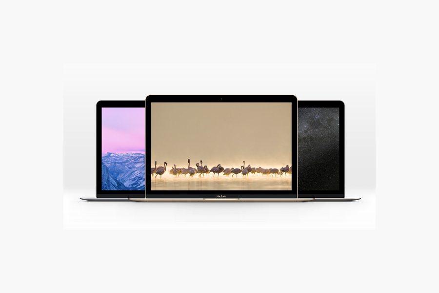 158 100+ MacBook Mockup Templates (PSD & Vector) design tips