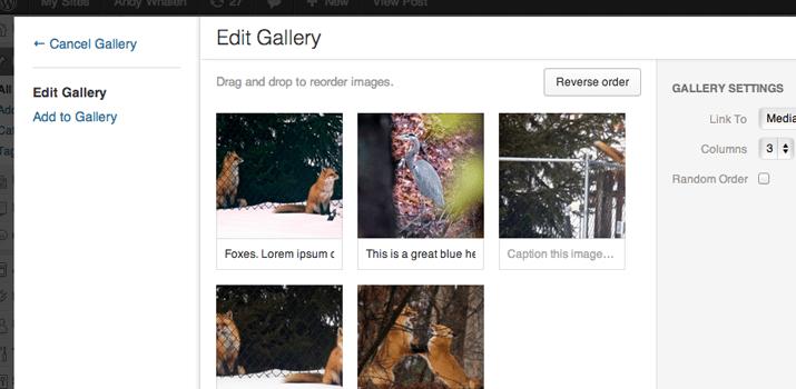 galleria gallery wordpress open source image plugin