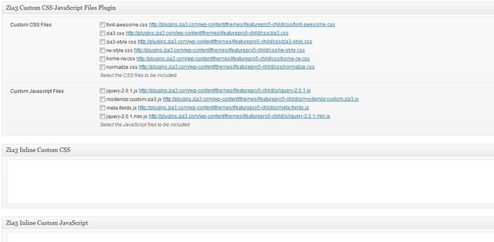 wordpress post edit page custom javascript css