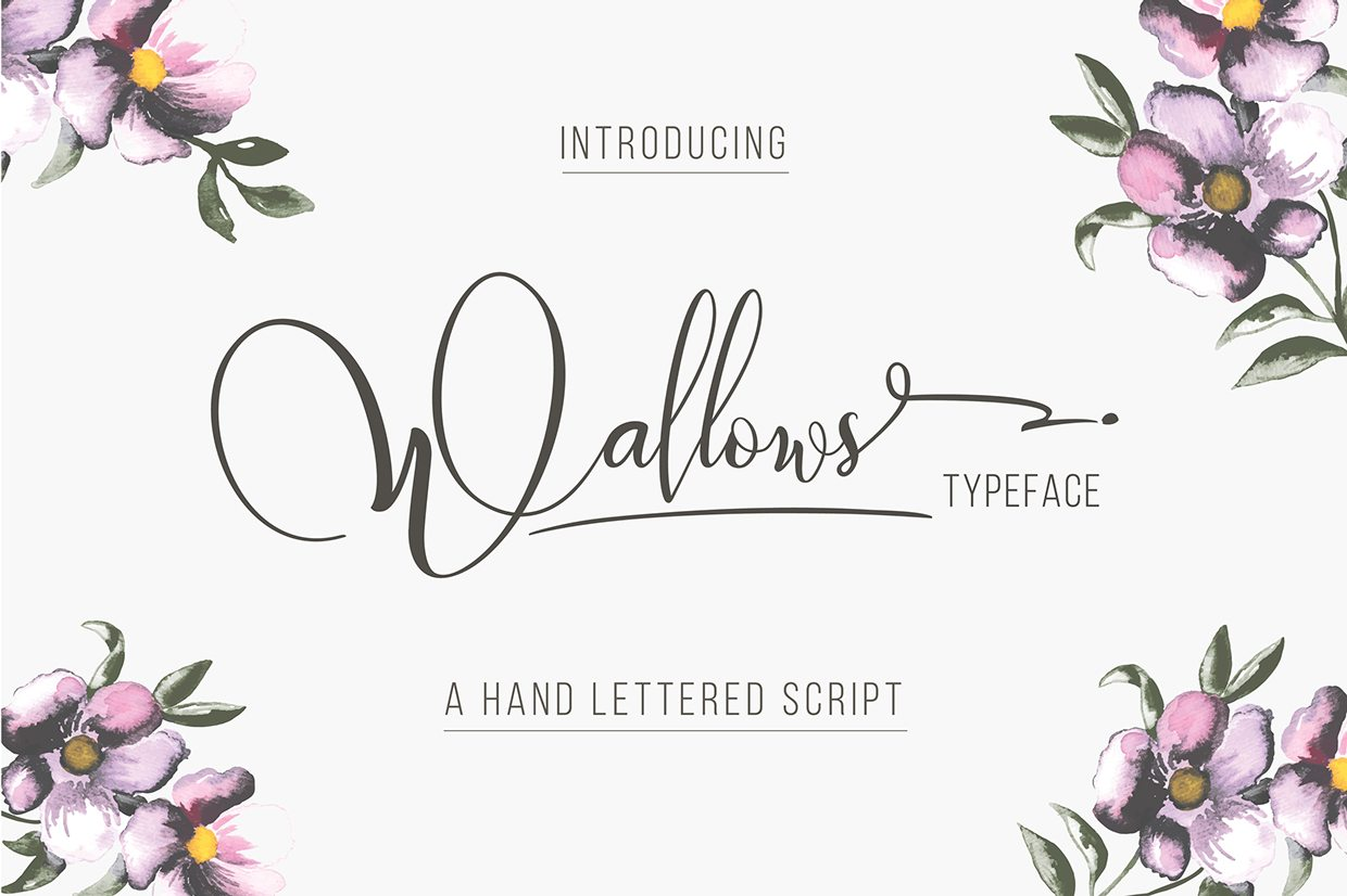 40790428537925.55c4d112733a6 100+ Beautiful Script, Brush & Calligraphy Fonts design tips