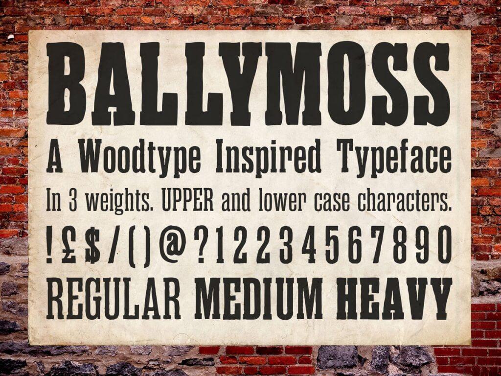 6-11-1024x768 50+ Best Slab Serif Fonts of 2019 design tips