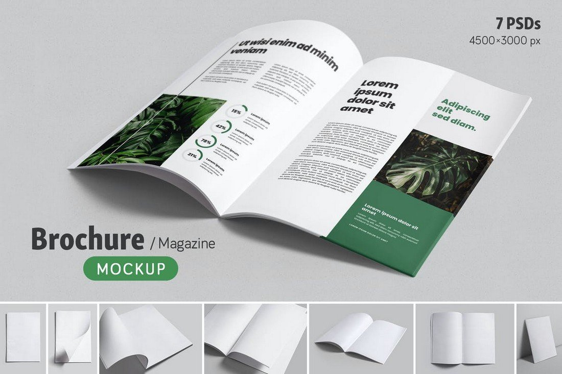 7 Brochure & Magazine Mockup Templates
