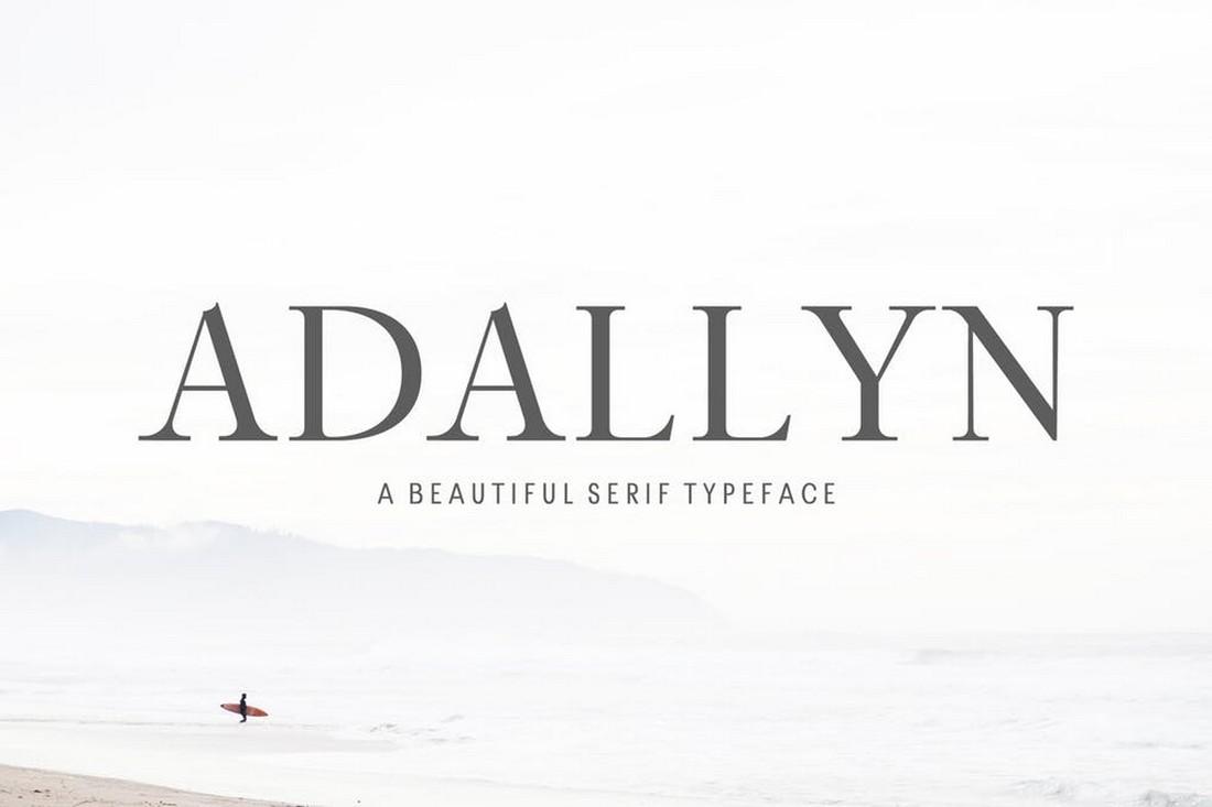 Adallyn - Serif Font Family Pack