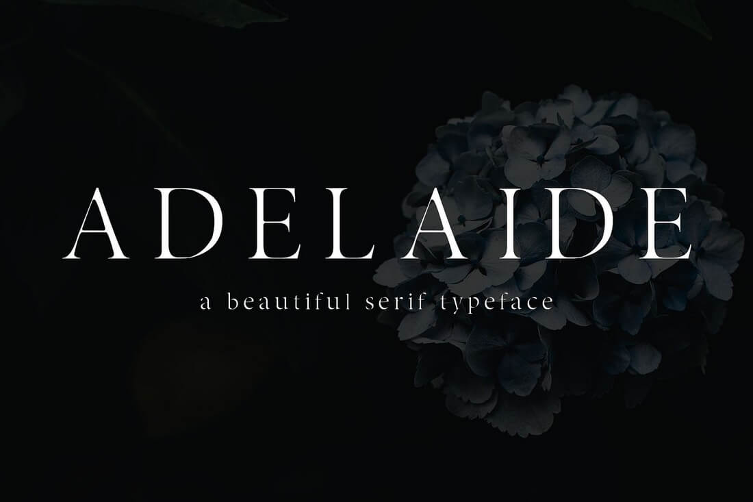 Adelaide 100+ Best Modern Serif Fonts design tips