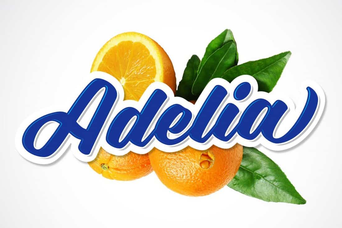 Adelia-Modern-Logo-Signage-Font 30+ Best Fonts for Signs design tips  Inspiration