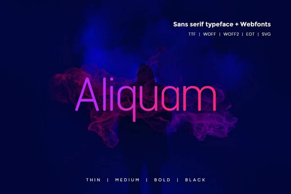 Aliquam - Modern Typeface