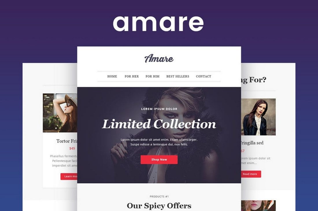 Amare-eCommerce-Email-Newsletter-Template 20+ Best MailChimp Email Newsletter Templates (Free + Premium) 2021 design tips