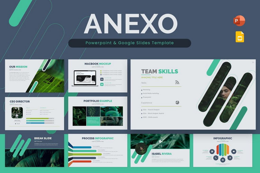 Anexo Powerpoint & Google Slides Template