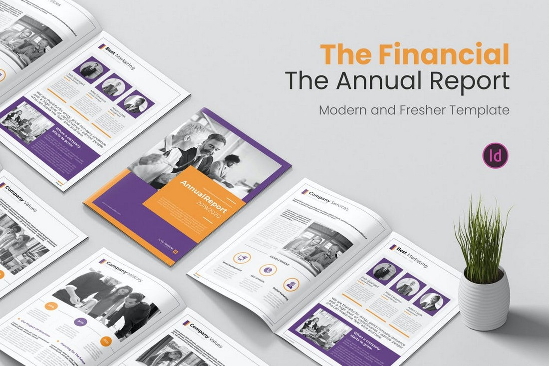 Annual Financial Report Template for InDesign