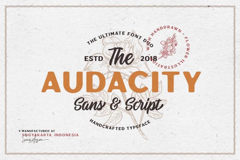 Audacity - Vintage Font Duo