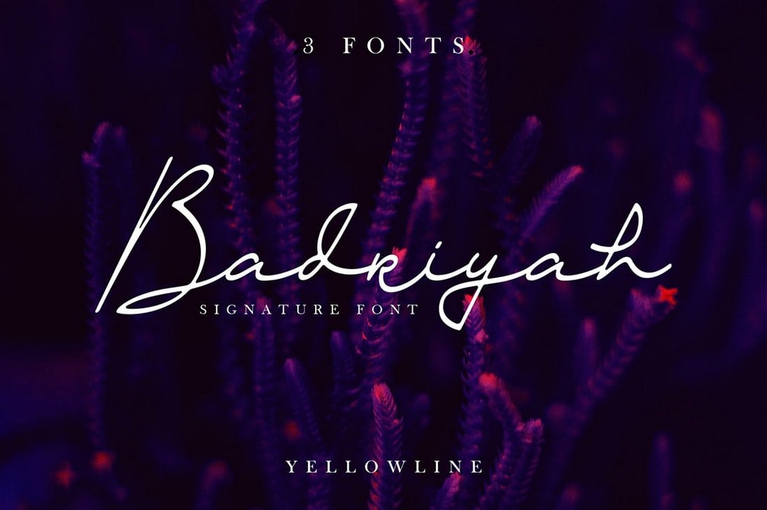 Badriyah-Script-Font 30+ Bold & Free Script Fonts design tips  Typography|fonts|script