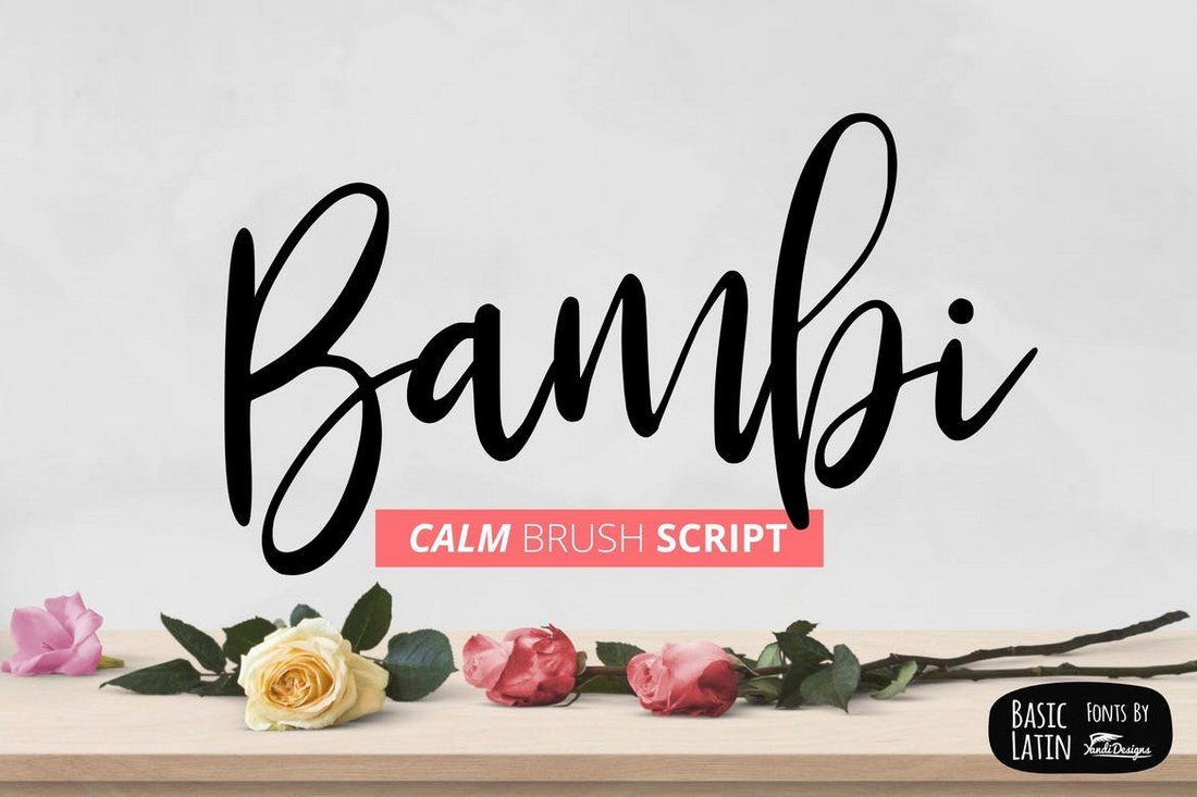 30+ Best Hand Lettering Fonts – Instant Web Site Tools