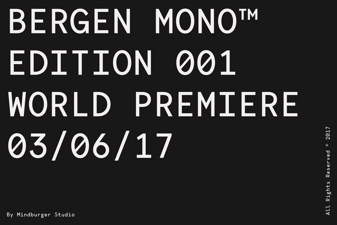 Bergen-Mono 10+ Professional Monospaced Fonts for Designers design tips