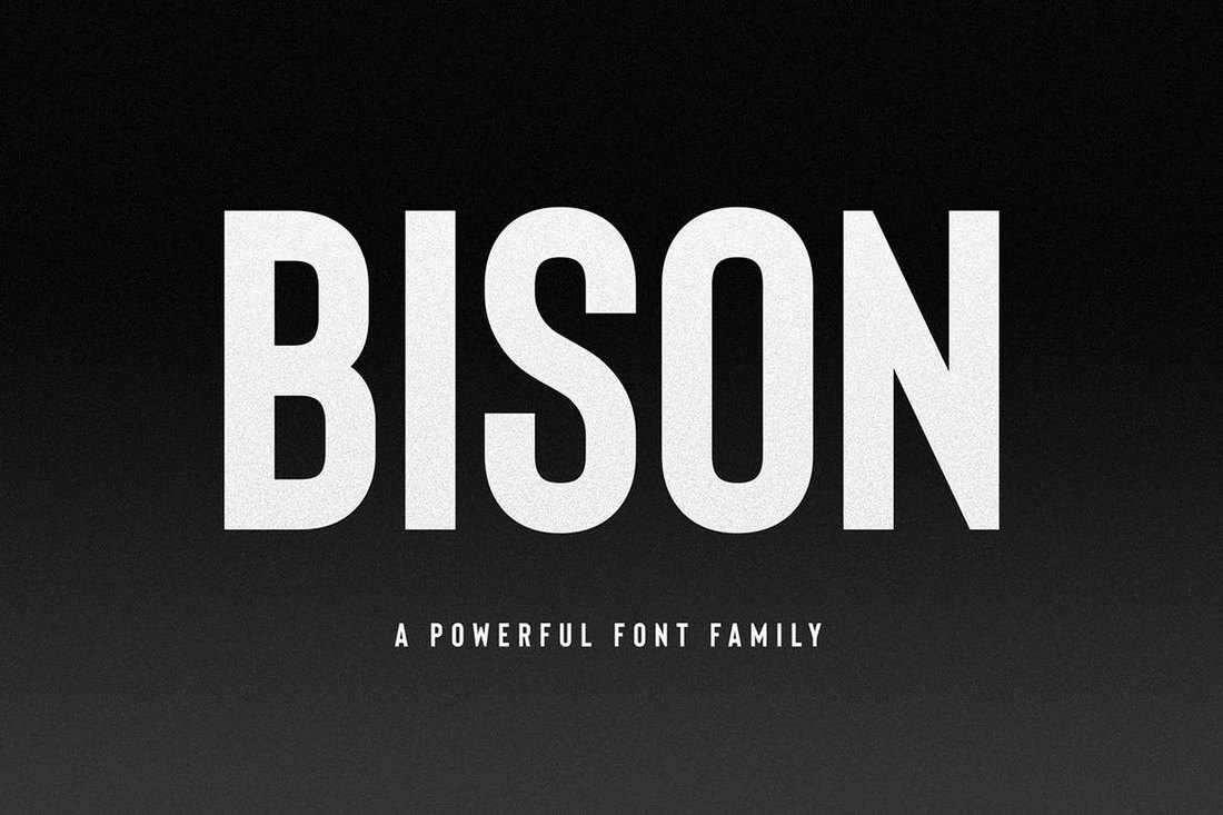 Bison-Font-Family 20+ Best Fonts for PowerPoint Presentations design tips