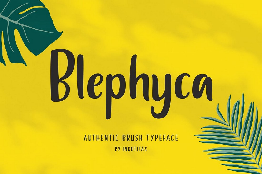 Blephyca-Creative-Brush-Poster-Font 30+ Best Fonts for Posters design tips