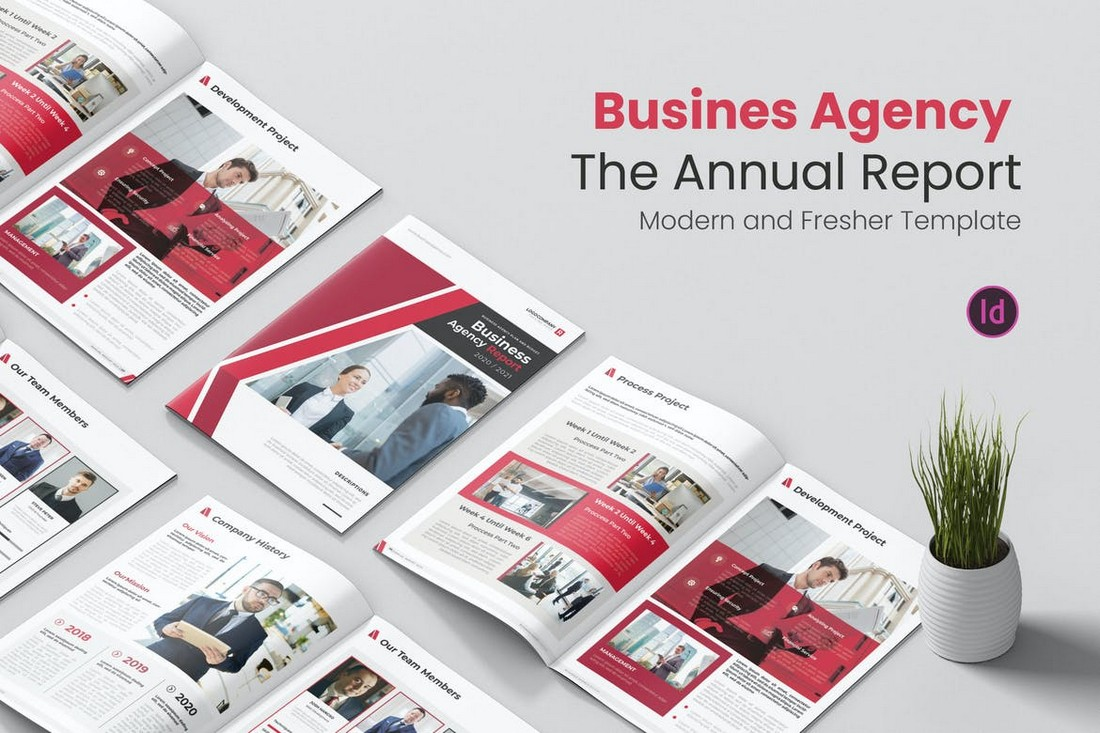 Business Agency - Annual Report InDesign Template