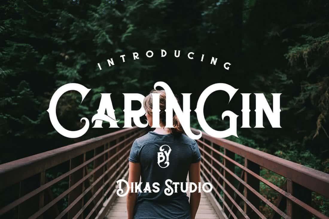 Caringin - Creative Vintage Font