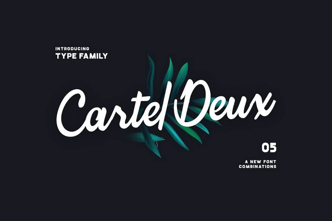 Cartel-Deux 100+ Beautiful Script, Brush & Calligraphy Fonts design tips