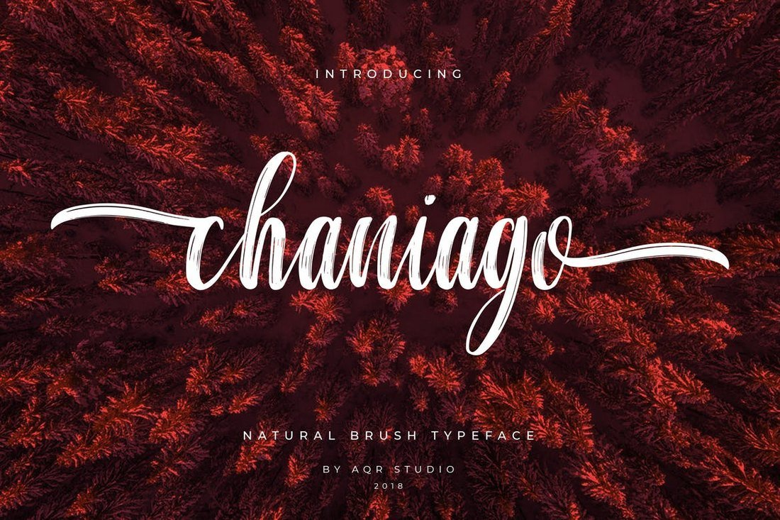 Chaniago Natural Brush