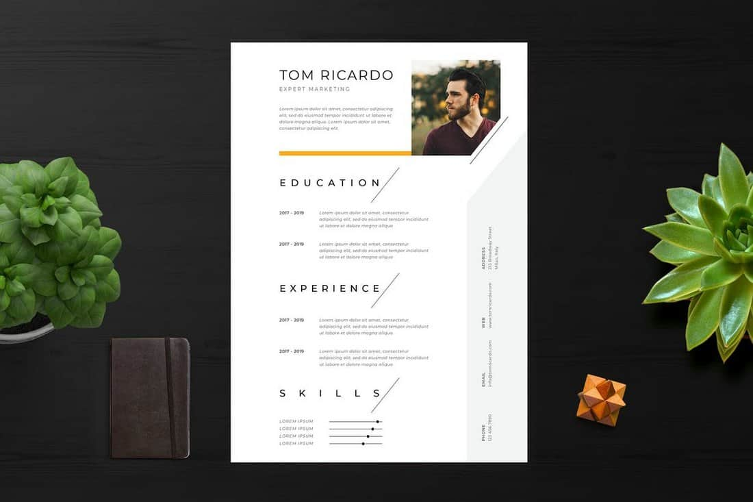 Clean-Minimalist-Resume-Template 50+ Best CV & Resume Templates 2020 design tips