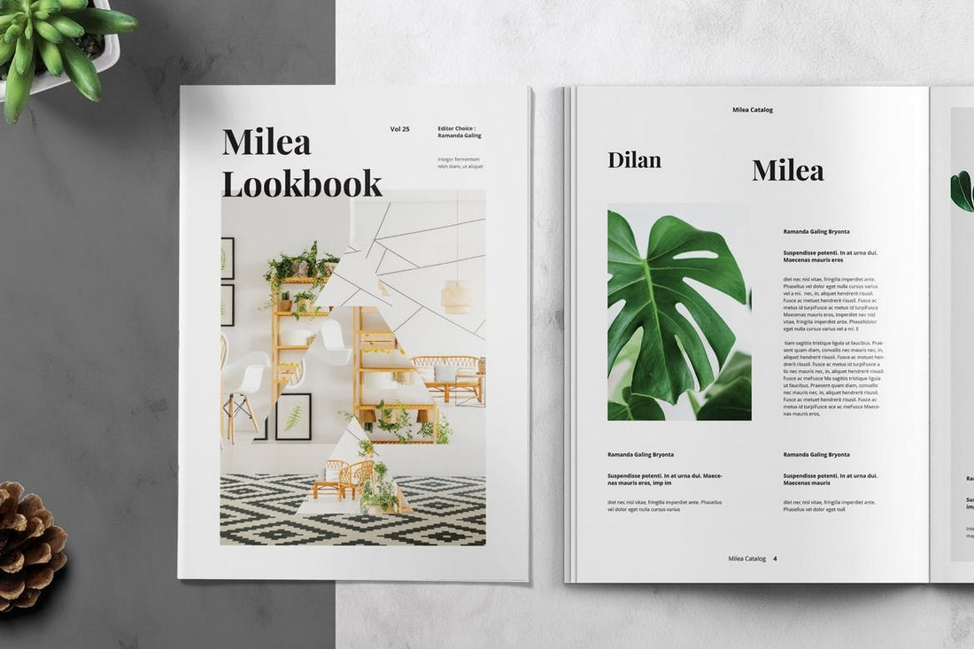 Creative Lookbook Catalog Template