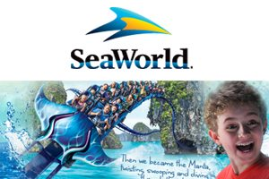 Web Design Critique #88: SeaWorld