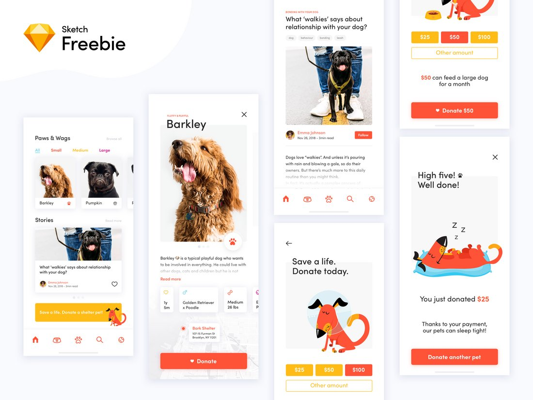 Dog Donation App Sketch Template
