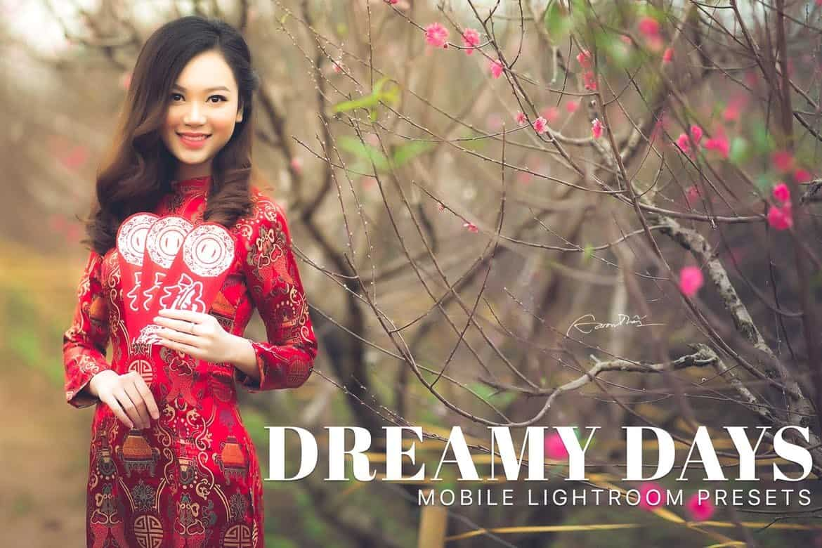 Dreamy Days - Portrait Lightroom Presets
