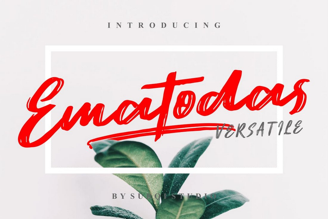 Ematodas 30+ Best Cursive & Script Fonts design tips