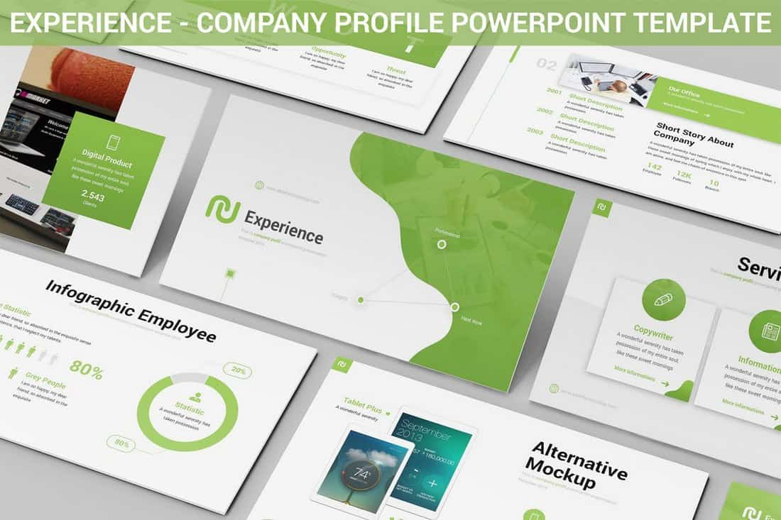 Experience-Powerpoint-Company-Profile-Template 20+ Best Company Profile Templates (Word + PowerPoint) design tips  Inspiration|company profile