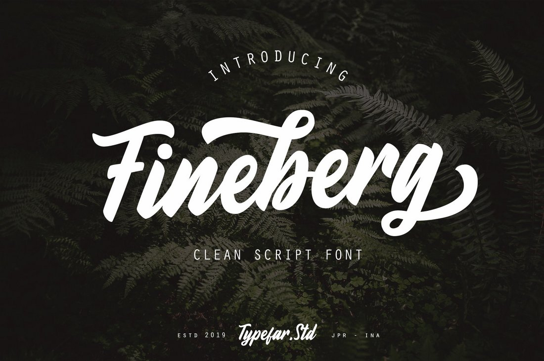 Fineberg-Clean-Script-Font 30+ Bold & Free Script Fonts design tips  Typography|fonts|script