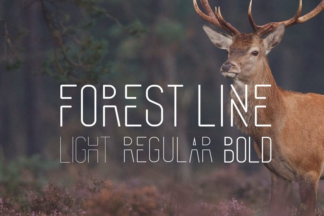 Forest-Line-Font-Condensed 40+ Best Condensed & Narrow Fonts of 2019 design tips