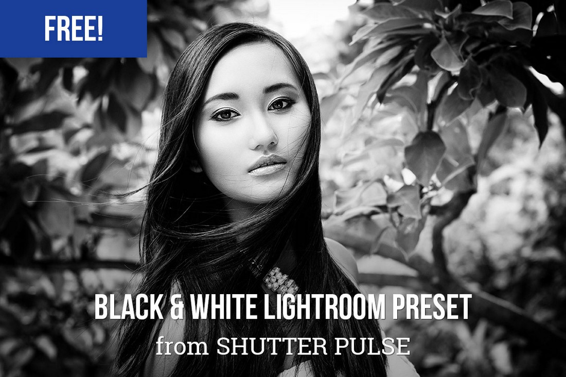 Free-Bold-Black-White-Lightroom-Preset 50+ Best Lightroom Presets for Portraits (Free & Pro) 2020 design tips