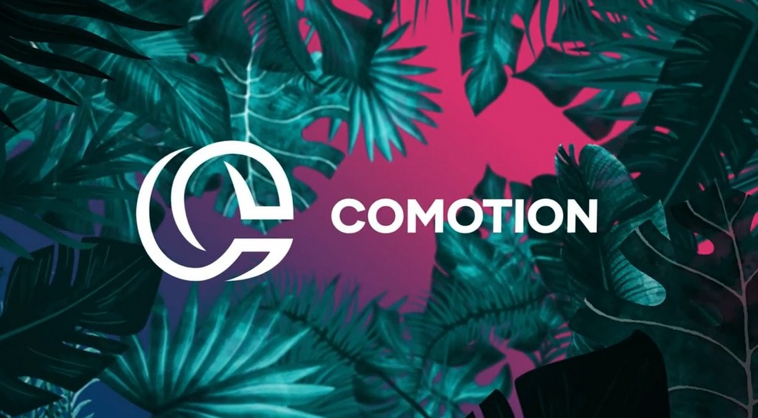 Free Night Tropical Logo Animation