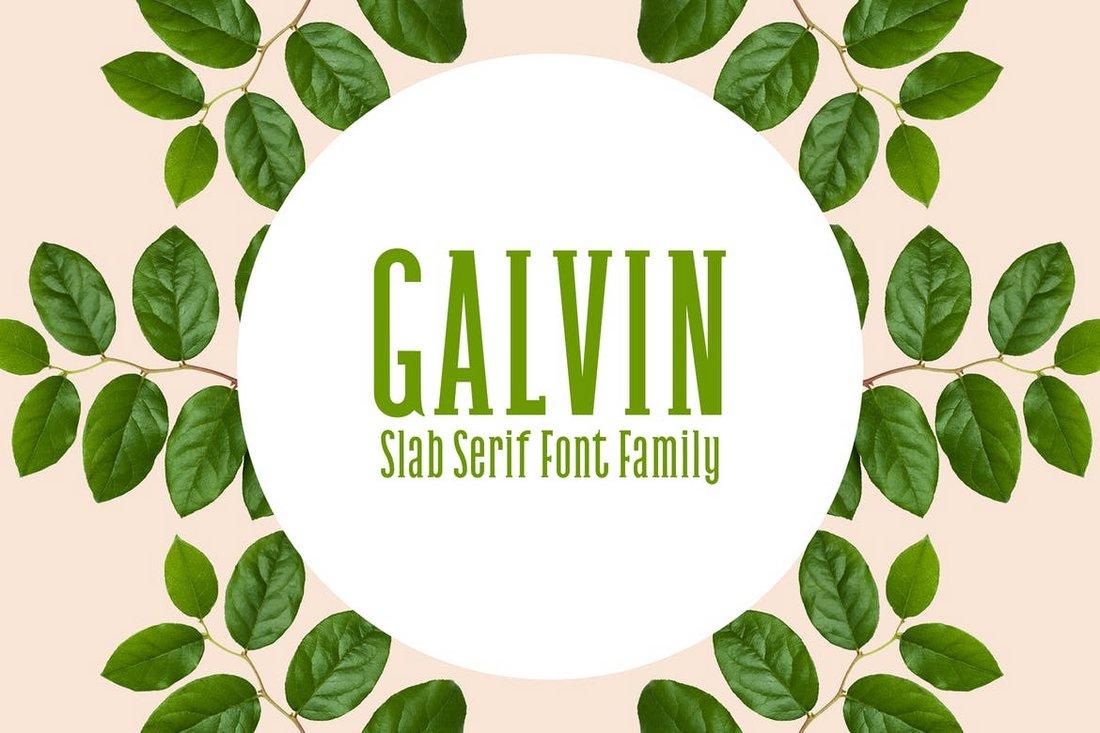 Galvin - Slab Serif Font Family Pack