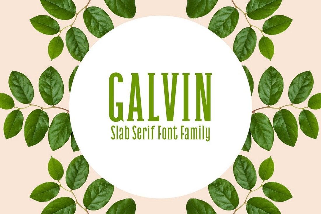 Galvin Slab - Serif Font Family