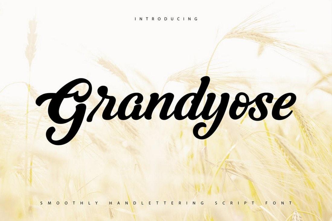 Grandyose-Handlettering-Script-Font 40+ Best Hand Lettering & Handwriting Fonts 2020 design tips  Inspiration|cursive|script