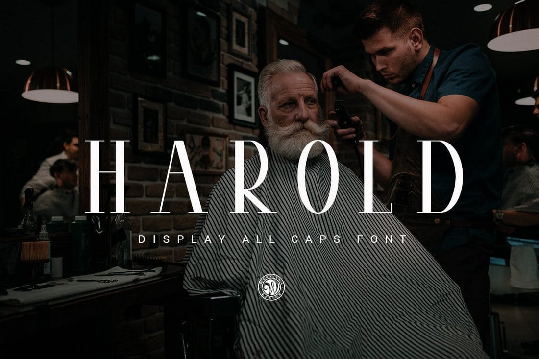 Harold-Modern-Serif-Font 100+ Best Modern Serif Fonts design tips
