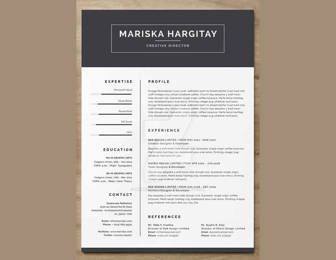 High End Free Resume CV for Word