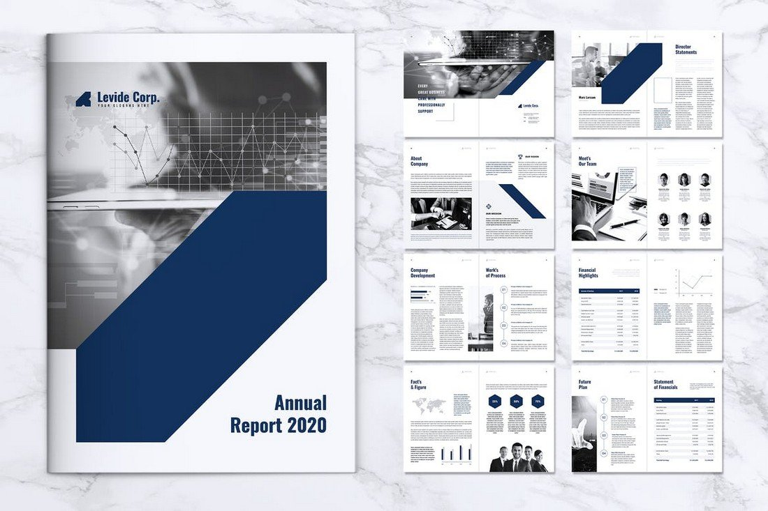 LEVIDE - Corporate Annual Report Template
