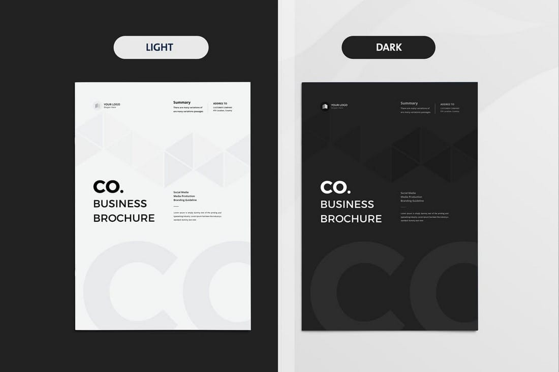 Light & Dark Company Business Brochure